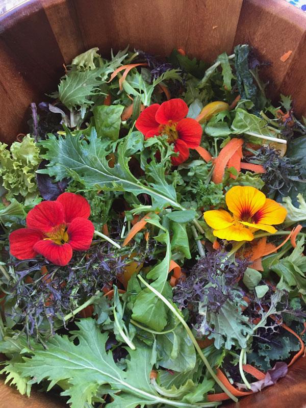 nasturtium kale salad